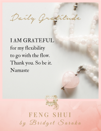 Daily Gratitude Volume 2 by Bridget Saraka (2)